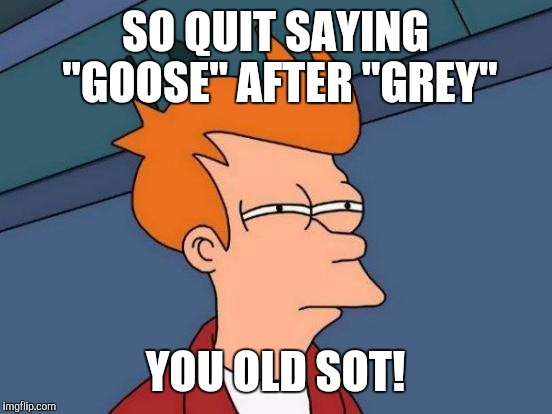"Futurama Fry Meme | SO QUIT SAYING ""GOOSE"" AFTER ""GREY"" YOU OLD SOT! 