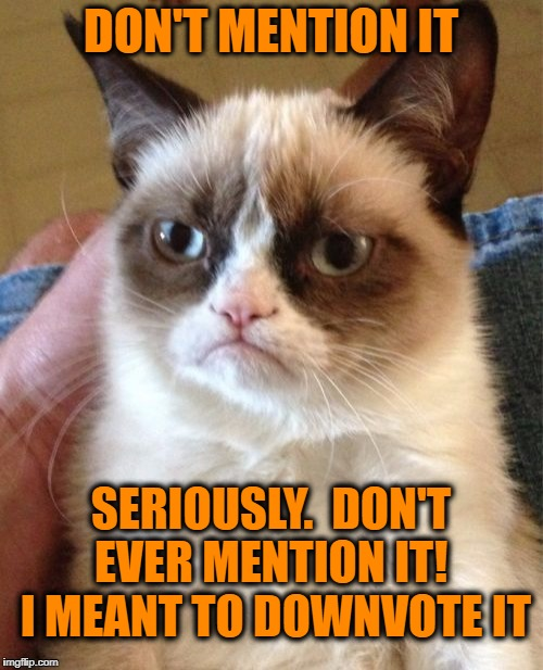 Grumpy Cat Meme | DON'T MENTION IT SERIOUSLY.  DON'T EVER MENTION IT!  I MEANT TO DOWNVOTE IT | image tagged in memes,grumpy cat | made w/ Imgflip meme maker