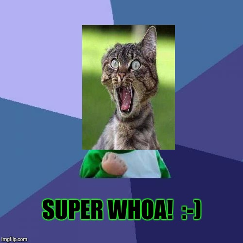 Success Kid Meme | SUPER WHOA!  :-) | image tagged in memes,success kid | made w/ Imgflip meme maker