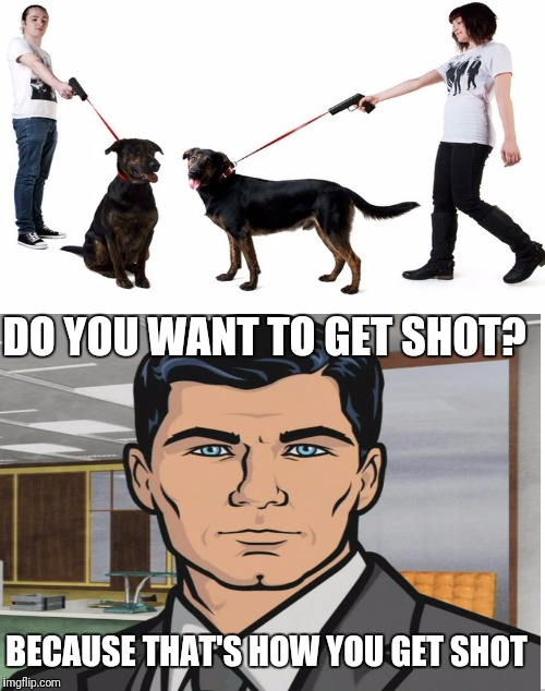 That's how you get shot | DO YOU WANT TO GET SHOT? BECAUSE THAT'S HOW YOU GET SHOT | image tagged in sir_unknown,imgflip,memes,gun,dank,archer | made w/ Imgflip meme maker