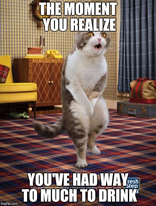 Gotta Go Cat | THE MOMENT YOU REALIZE YOU'VE HAD WAY TO MUCH TO DRINK | image tagged in memes,gotta go cat | made w/ Imgflip meme maker