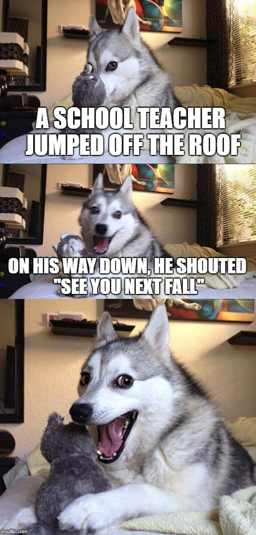 "Bad Pun Dog Meme | A SCHOOL TEACHER JUMPED OFF THE ROOF ON HIS WAY DOWN, HE SHOUTED ""SEE YOU NEXT FALL"" 