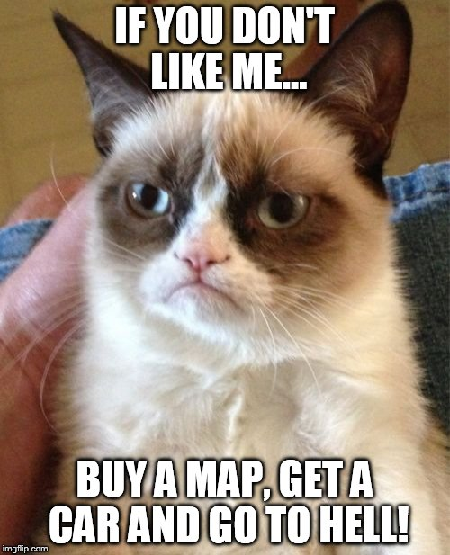 Grumpy Cat Meme | IF YOU DON'T LIKE ME... BUY A MAP, GET A CAR AND GO TO HELL! | image tagged in memes,grumpy cat | made w/ Imgflip meme maker