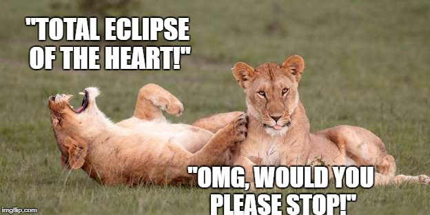 "More Eclipse Fun |  ""TOTAL ECLIPSE OF THE HEART!""; ""OMG, WOULD YOU PLEASE STOP!"" 