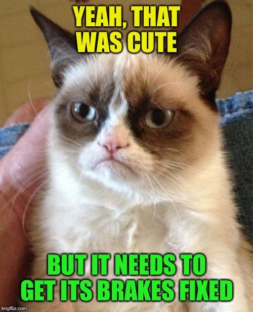 Grumpy Cat Meme | YEAH, THAT WAS CUTE BUT IT NEEDS TO GET ITS BRAKES FIXED | image tagged in memes,grumpy cat | made w/ Imgflip meme maker
