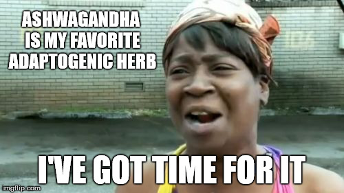 Aint Nobody Got Time For That Meme | ASHWAGANDHA IS MY FAVORITE ADAPTOGENIC HERB I'VE GOT TIME FOR IT | image tagged in memes,aint nobody got time for that | made w/ Imgflip meme maker