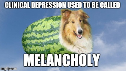 CLINICAL DEPRESSION USED TO BE CALLED MELANCHOLY | image tagged in melon-colly | made w/ Imgflip meme maker