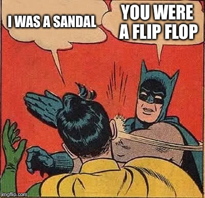 Batman Slapping Robin Meme | I WAS A SANDAL YOU WERE A FLIP FLOP | image tagged in memes,batman slapping robin | made w/ Imgflip meme maker