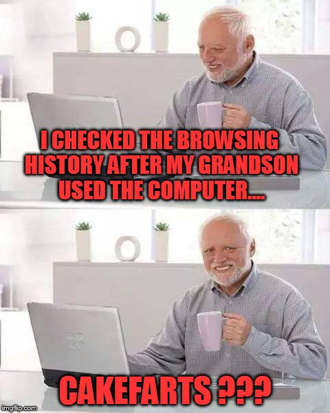 Hide the Pain Harold Meme | I CHECKED THE BROWSING HISTORY AFTER MY GRANDSON USED THE COMPUTER.... CAKEFARTS ??? | image tagged in memes,hide the pain harold | made w/ Imgflip meme maker