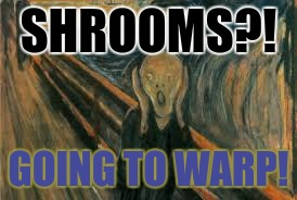 SHROOMS?! GOING TO WARP! | made w/ Imgflip meme maker