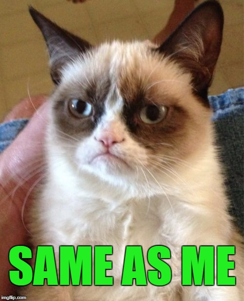 Grumpy Cat Meme | SAME AS ME | image tagged in memes,grumpy cat | made w/ Imgflip meme maker