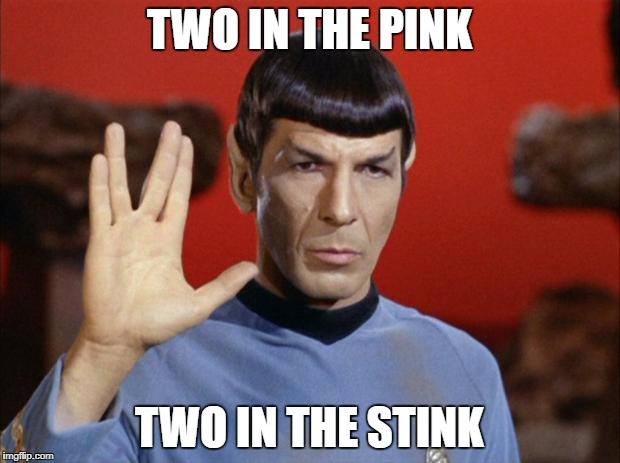 spock salute | TWO IN THE PINK TWO IN THE STINK | image tagged in spock salute | made w/ Imgflip meme maker