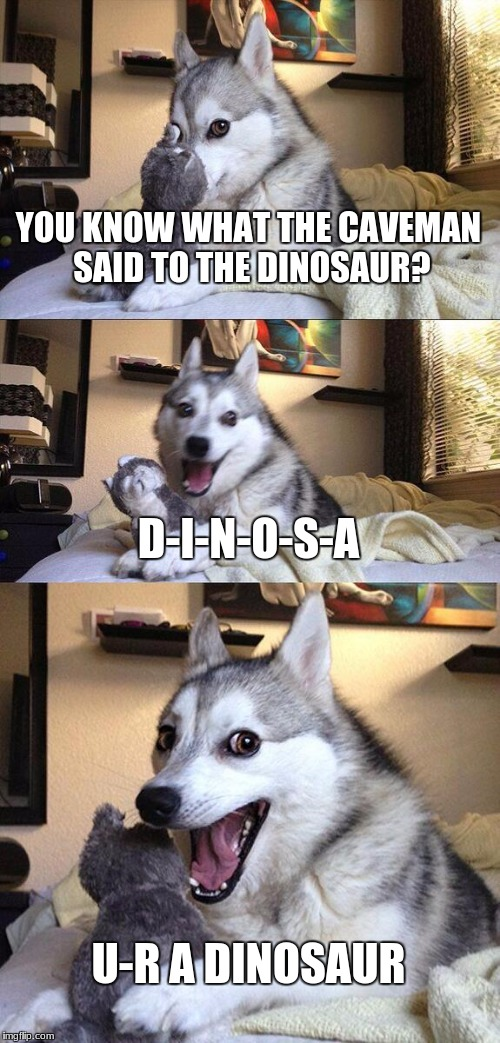 BAD PUNS... MORE MORE MORE | YOU KNOW WHAT THE CAVEMAN SAID TO THE DINOSAUR? D-I-N-O-S-A U-R A DINOSAUR | image tagged in memes,bad pun dog | made w/ Imgflip meme maker