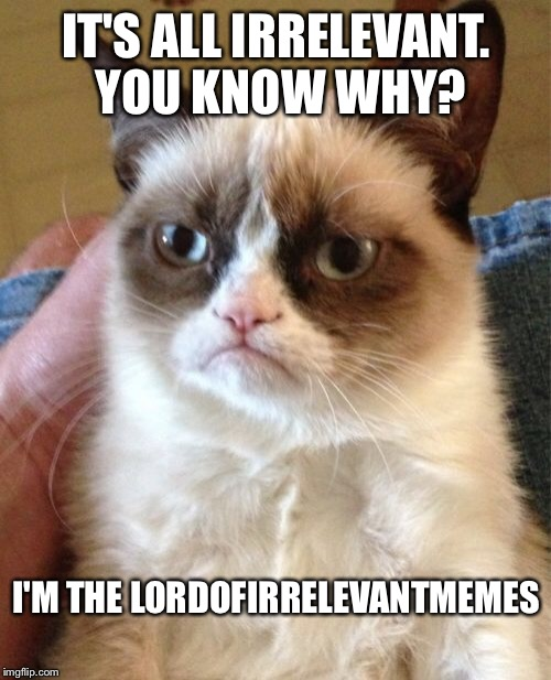 Grumpy Cat Meme | IT'S ALL IRRELEVANT. YOU KNOW WHY? I'M THE LORDOFIRRELEVANTMEMES | image tagged in memes,grumpy cat | made w/ Imgflip meme maker