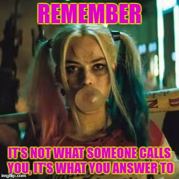 REMEMBER IT'S NOT WHAT SOMEONE CALLS YOU, IT'S WHAT YOU ANSWER TO | image tagged in harley | made w/ Imgflip meme maker