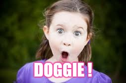 Memes, excited girl | DOGGIE ! | image tagged in memes,excited girl | made w/ Imgflip meme maker