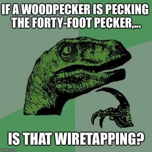 Philosoraptor Meme | IF A WOODPECKER IS PECKING THE FORTY-FOOT PECKER,... IS THAT WIRETAPPING? | image tagged in memes,philosoraptor | made w/ Imgflip meme maker