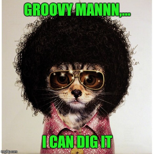 GROOVY MANNN,... I CAN DIG IT | made w/ Imgflip meme maker