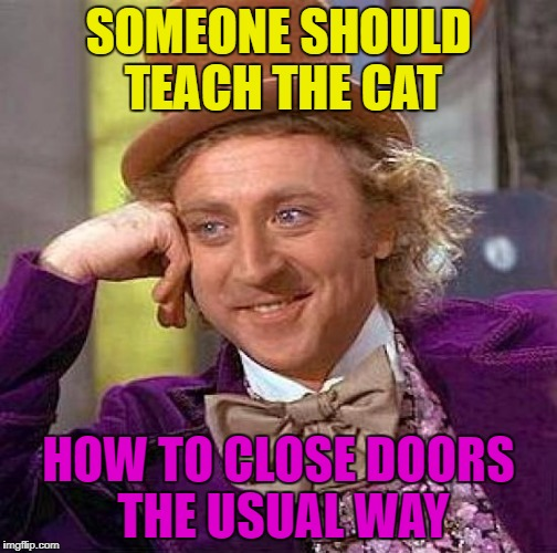 Creepy Condescending Wonka Meme | SOMEONE SHOULD TEACH THE CAT HOW TO CLOSE DOORS THE USUAL WAY | image tagged in memes,creepy condescending wonka | made w/ Imgflip meme maker