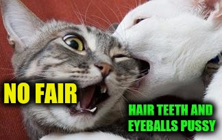 NO FAIR HAIR TEETH AND EYEBALLS PUSSY | made w/ Imgflip meme maker