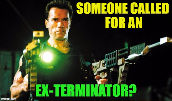 SOMEONE CALLED FOR AN EX-TERMINATOR? | made w/ Imgflip meme maker