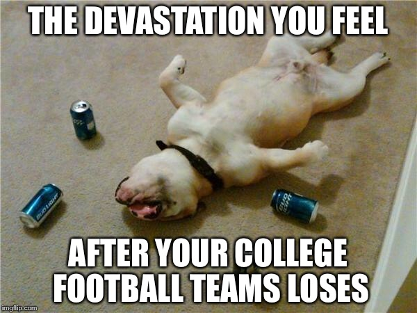 drunk dog | THE DEVASTATION YOU FEEL AFTER YOUR COLLEGE FOOTBALL TEAMS LOSES | image tagged in drunk dog | made w/ Imgflip meme maker