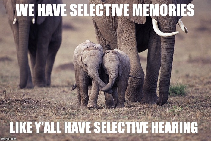WE HAVE SELECTIVE MEMORIES LIKE Y'ALL HAVE SELECTIVE HEARING | made w/ Imgflip meme maker