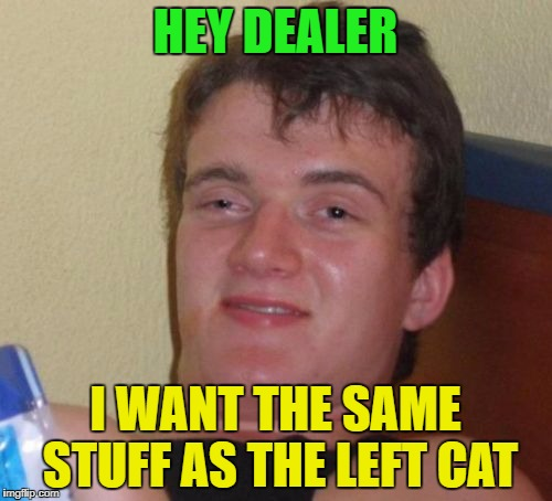 10 Guy Meme | HEY DEALER I WANT THE SAME STUFF AS THE LEFT CAT | image tagged in memes,10 guy | made w/ Imgflip meme maker