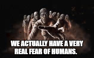 WE ACTUALLY HAVE A VERY REAL FEAR OF HUMANS. | image tagged in zombies | made w/ Imgflip meme maker