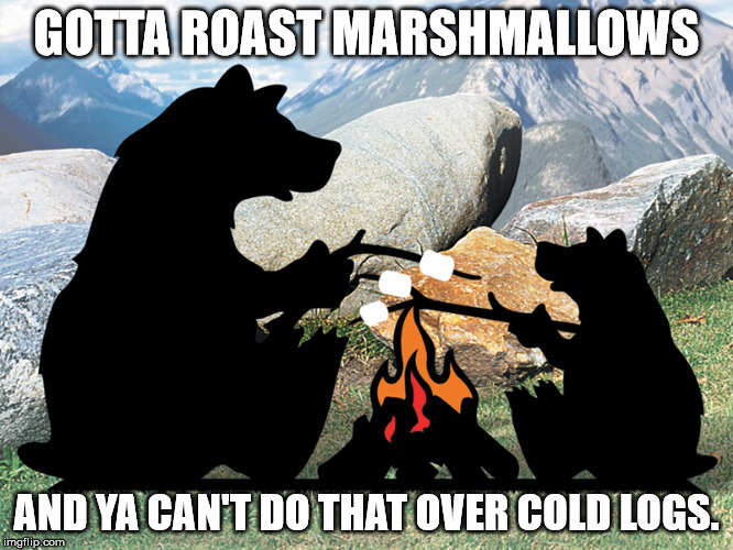 GOTTA ROAST MARSHMALLOWS AND YA CAN'T DO THAT OVER COLD LOGS. | made w/ Imgflip meme maker