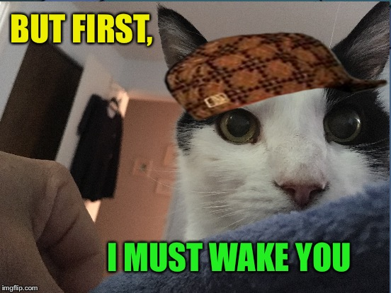 BUT FIRST, I MUST WAKE YOU | made w/ Imgflip meme maker