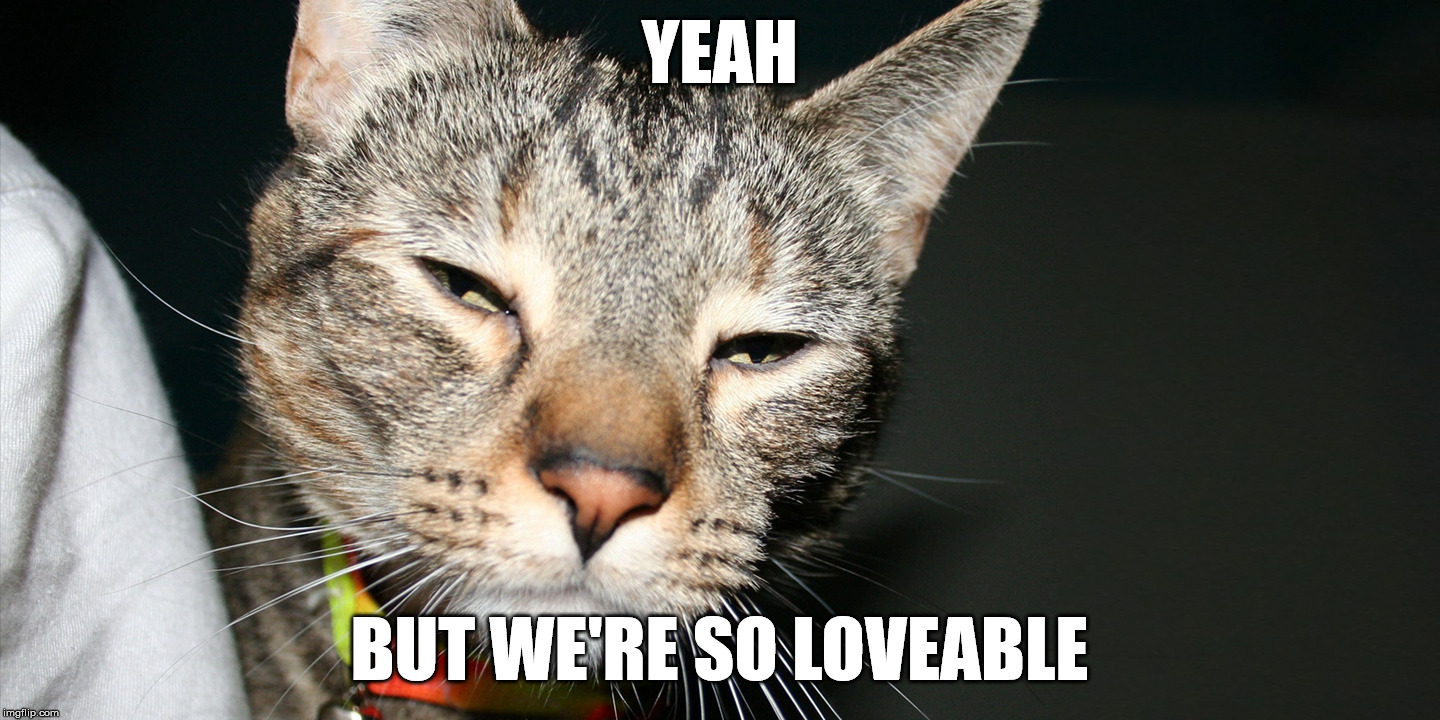 YEAH BUT WE'RE SO LOVEABLE | made w/ Imgflip meme maker