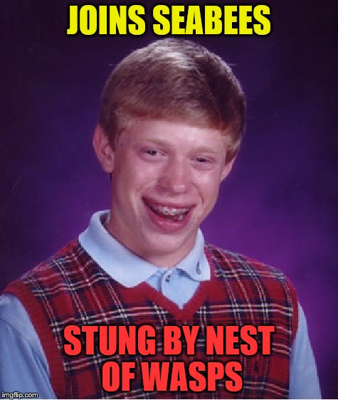 Bad Luck Brian Meme | JOINS SEABEES STUNG BY NEST OF WASPS | image tagged in memes,bad luck brian | made w/ Imgflip meme maker