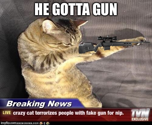 HE GOTTA GUN | image tagged in cats,remington 700,cat,guns,catsniper | made w/ Imgflip meme maker