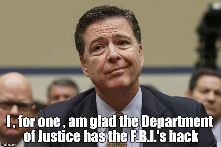 Honestly , what did you think would happen ? |  I , for one , am glad the Department of Justice has the F.B.I.'s back | image tagged in phoney comey,injustice,wiretapping,president,candidate | made w/ Imgflip meme maker