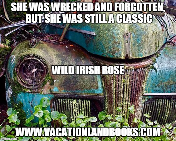 SHE WAS WRECKED AND FORGOTTEN, BUT SHE WAS STILL A CLASSIC WWW.VACATIONLANDBOOKS.COM WILD IRISH ROSE | image tagged in classic car,books | made w/ Imgflip meme maker