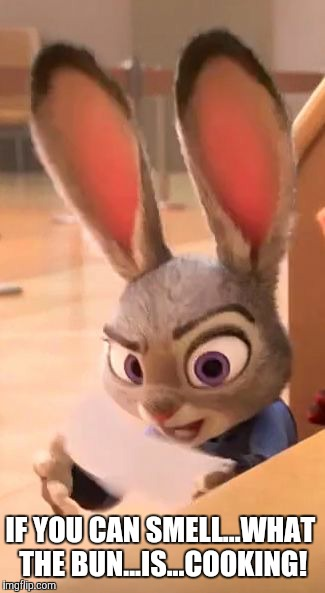 Know your role! - Zootopia edition  | IF YOU CAN SMELL...WHAT THE BUN...IS...COOKING! | image tagged in judy hopps raised eyebrow,judy hopps,zootopia,the rock,funny,memes | made w/ Imgflip meme maker