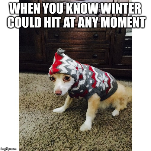 WHEN YOU KNOW WINTER COULD HIT AT ANY MOMENT | image tagged in winter | made w/ Imgflip meme maker