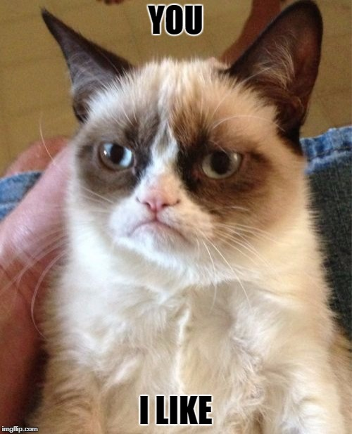 Grumpy Cat Meme | YOU I LIKE | image tagged in memes,grumpy cat | made w/ Imgflip meme maker