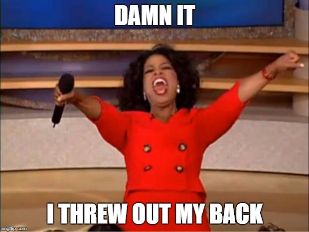 Oprah You Get A Meme | DAMN IT I THREW OUT MY BACK | image tagged in memes,oprah you get a | made w/ Imgflip meme maker