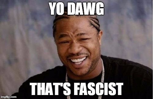 Yo Dawg Heard You Meme | YO DAWG THAT'S FASCIST | image tagged in memes,yo dawg heard you | made w/ Imgflip meme maker