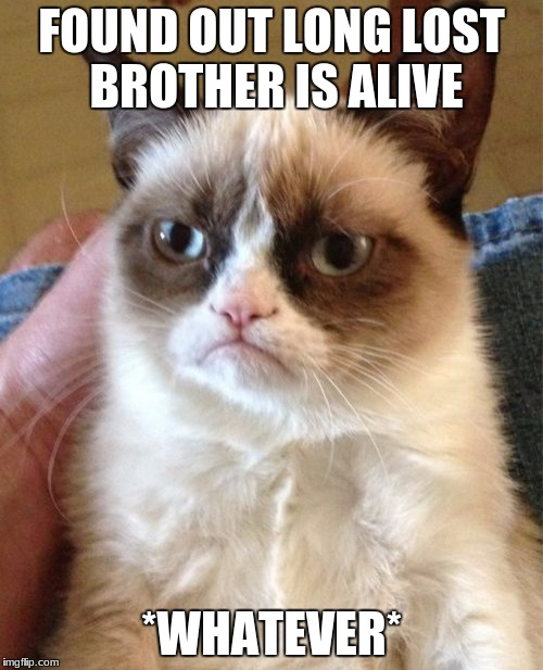 Grumpy Cat Meme | FOUND OUT LONG LOST BROTHER IS ALIVE *WHATEVER* | image tagged in memes,grumpy cat | made w/ Imgflip meme maker
