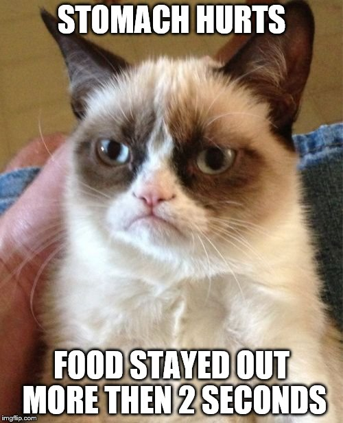Grumpy Cat Meme | STOMACH HURTS FOOD STAYED OUT MORE THEN 2 SECONDS | image tagged in memes,grumpy cat | made w/ Imgflip meme maker