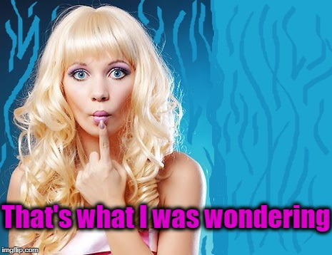 ditzy blonde | That's what I was wondering | image tagged in ditzy blonde | made w/ Imgflip meme maker