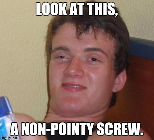 10 Guy Meme | LOOK AT THIS, A NON-POINTY SCREW. | image tagged in memes,10 guy,AdviceAnimals | made w/ Imgflip meme maker