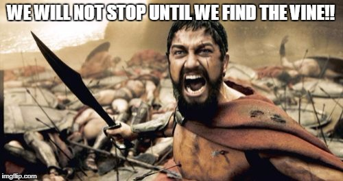 Sparta Leonidas Meme | WE WILL NOT STOP UNTIL WE FIND THE VINE!! | image tagged in memes,sparta leonidas | made w/ Imgflip meme maker