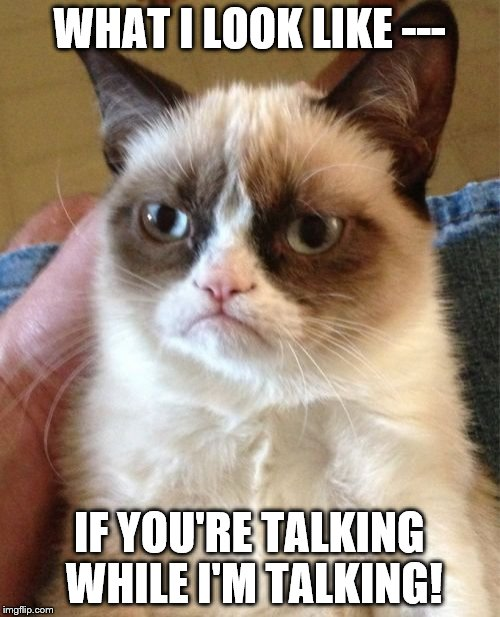 Grumpy Cat Meme | WHAT I LOOK LIKE --- IF YOU'RE TALKING WHILE I'M TALKING! | image tagged in memes,grumpy cat | made w/ Imgflip meme maker