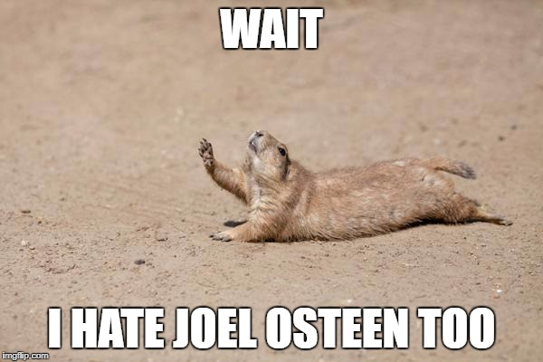 WAIT I HATE JOEL OSTEEN TOO | image tagged in wait for me squirrel,AdviceAnimals | made w/ Imgflip meme maker