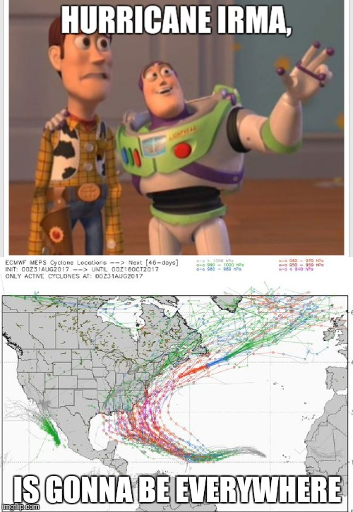 Hurricane Irma |  IS GONNA BE EVERYWHERE | image tagged in buzz lightyear | made w/ Imgflip meme maker