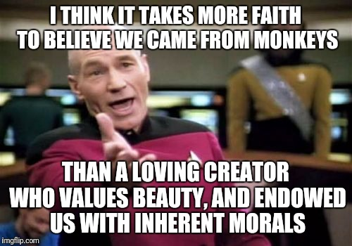 We're only here to survive? Explain music.  | I THINK IT TAKES MORE FAITH TO BELIEVE WE CAME FROM MONKEYS THAN A LOVING CREATOR WHO VALUES BEAUTY, AND ENDOWED US WITH INHERENT MORALS | image tagged in memes,picard wtf | made w/ Imgflip meme maker